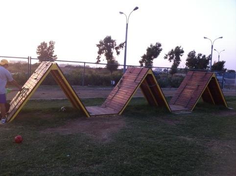 20111205-160916.jpg